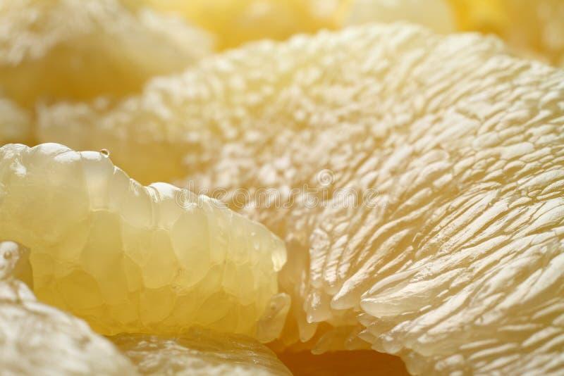 fruta Pomelo O Pomelo corta o close up Textura do macro do citrino Fundo do citrino imagens de stock royalty free