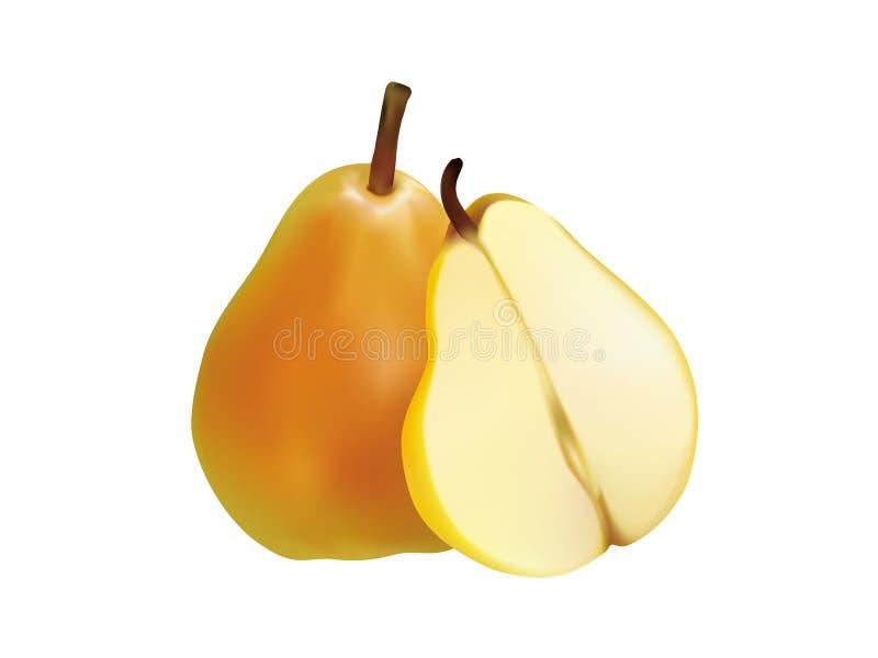 Fruta realista de la pera de la fruta stock de ilustración
