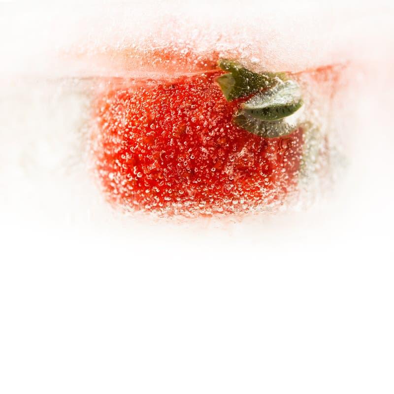 Fruta roja de la fresa congelada en hielo Cubo de hielo macro de la baya de la visión Foco suave Copie el espacio, fondo blanco imagen de archivo libre de regalías