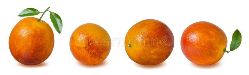 Fruta roja de la naranja de sangre en el fondo blanco con la trayectoria de recortes fotos de archivo libres de regalías