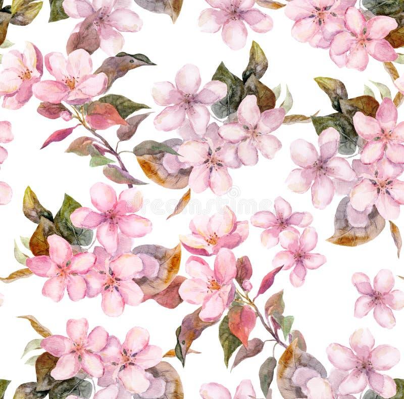 Fruta rosada - manzana, cereza, Sakura - flores Plantilla floral inconsútil Acuarela en el fondo blanco ilustración del vector