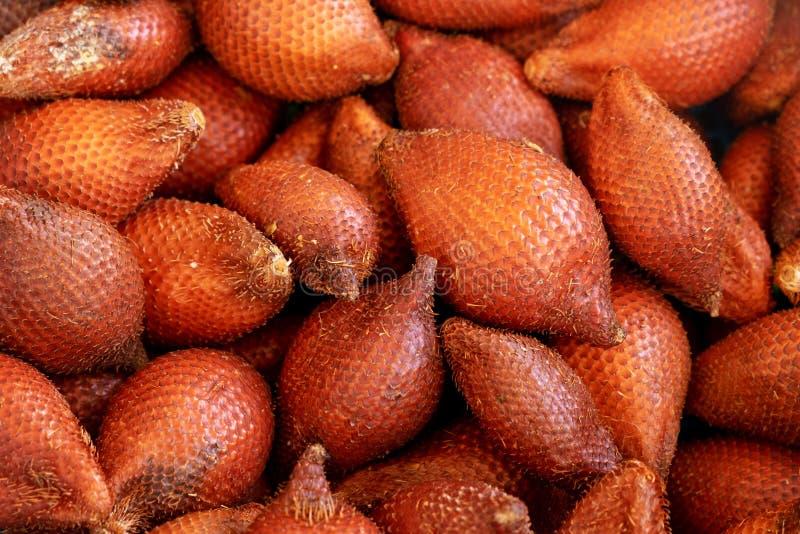Fruta sana y amarga del zalacca maduro de Salak Salacca en Spike Cover imagenes de archivo