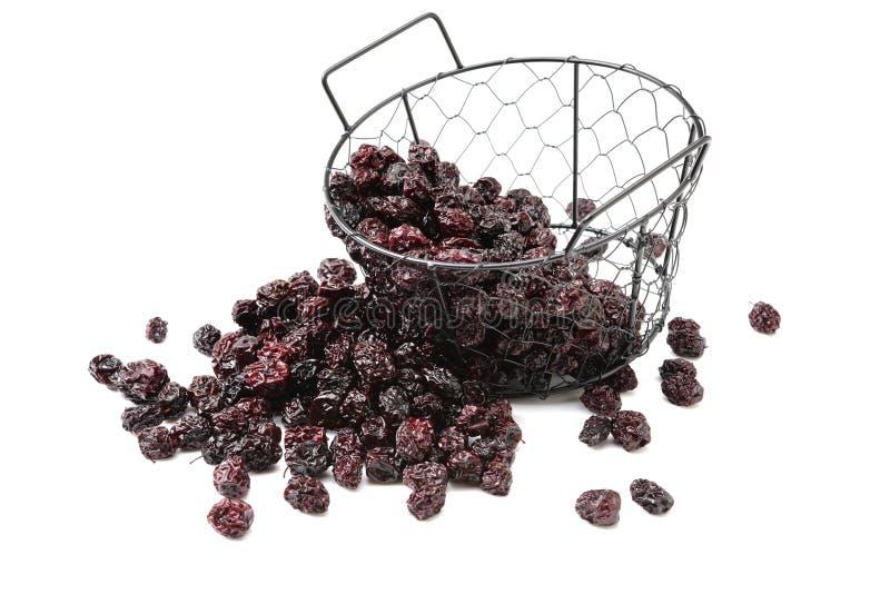 Fruta seca da ameixa ou da ameixa seca dietas imagem de stock royalty free