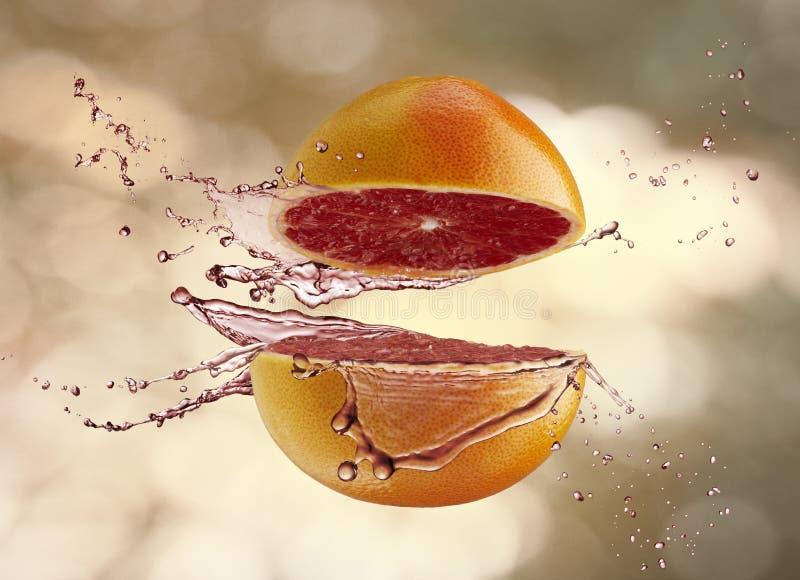 Fruta suculenta fotografia de stock royalty free