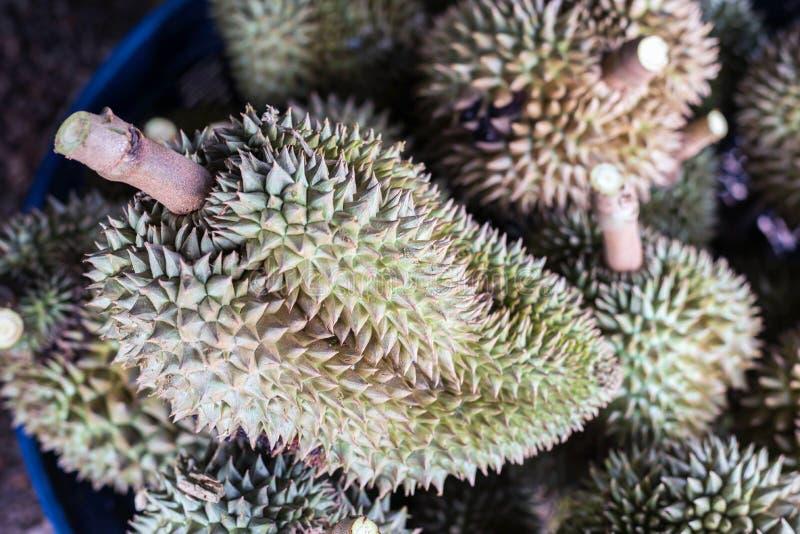 fruta tailandesa del durian, Durian en la mercado de la fruta local Tailandia imágenes de archivo libres de regalías