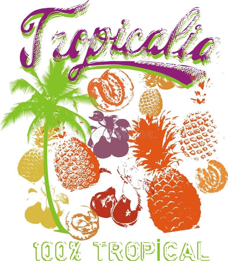 Fruta tropical ilustração do vetor
