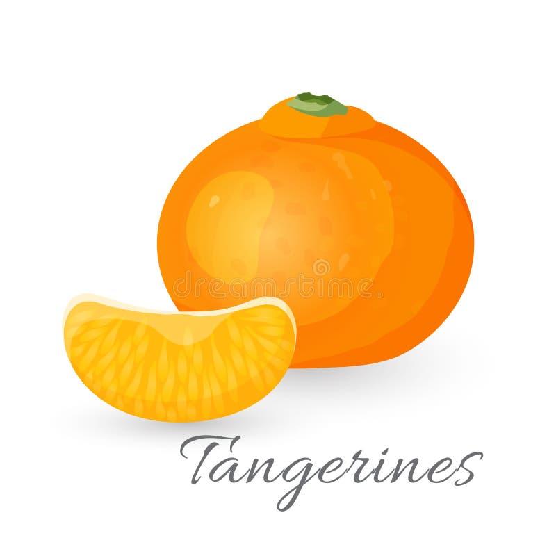 Fruta tropical de la mandarina aislada en blanco Vector realista de la mandarina ilustración del vector