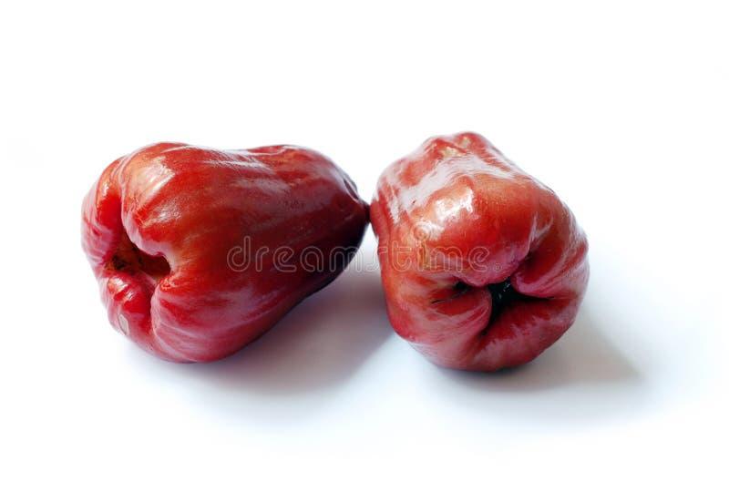Fruta tropical de la manzana de Rowsw foto de archivo