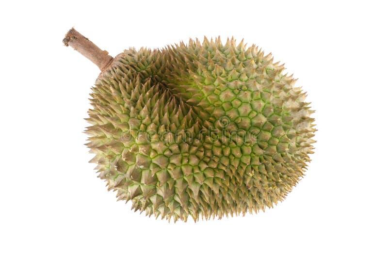 Fruta tropical - Durian foto de stock
