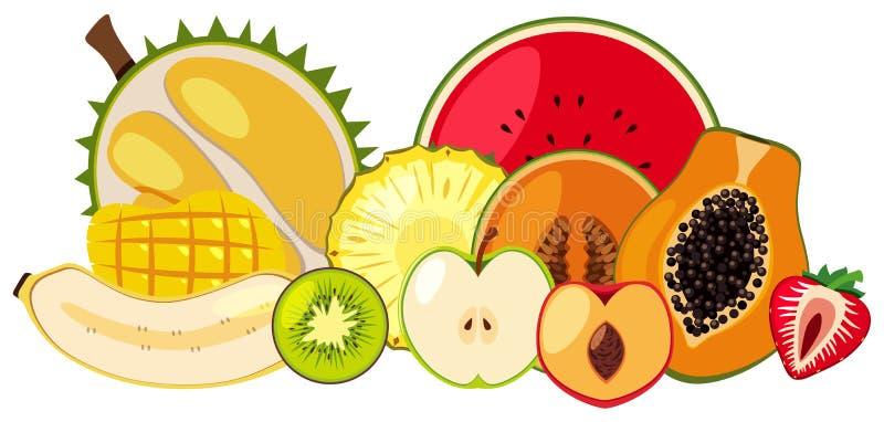 Fruta tropical en el fondo blanco ilustración del vector
