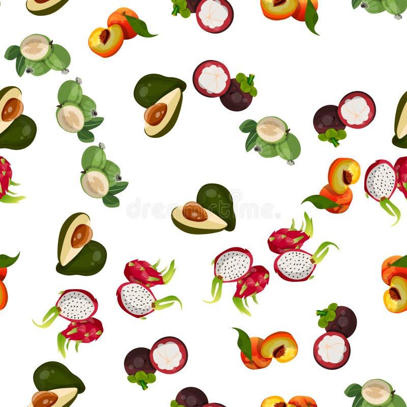 Fruta tropical exótica ilustración del vector