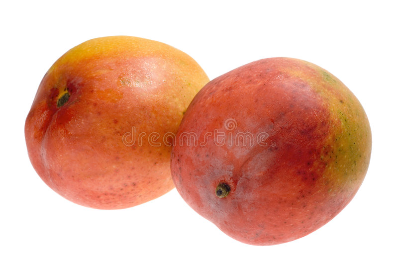 Fruta tropical - manga foto de stock