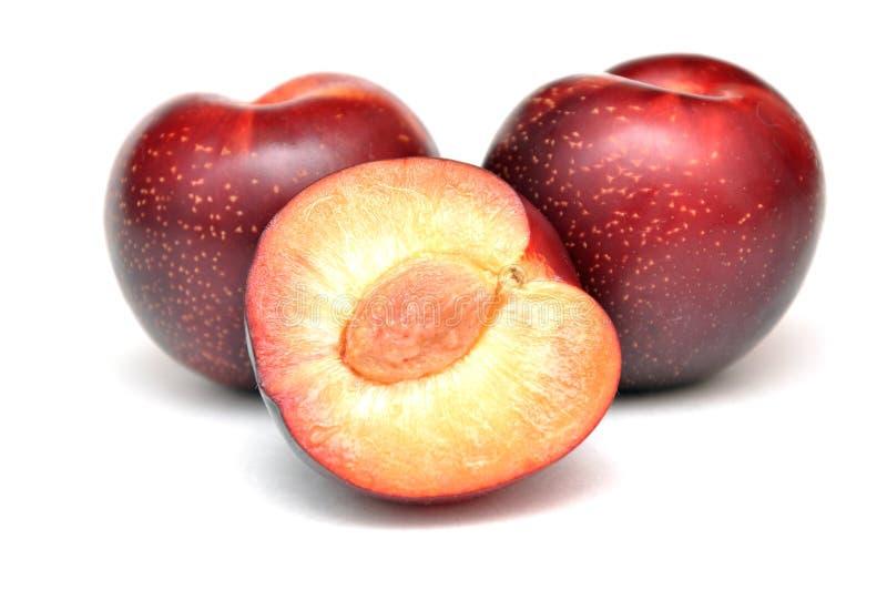 Fruta vermelha da ameixa imagens de stock royalty free