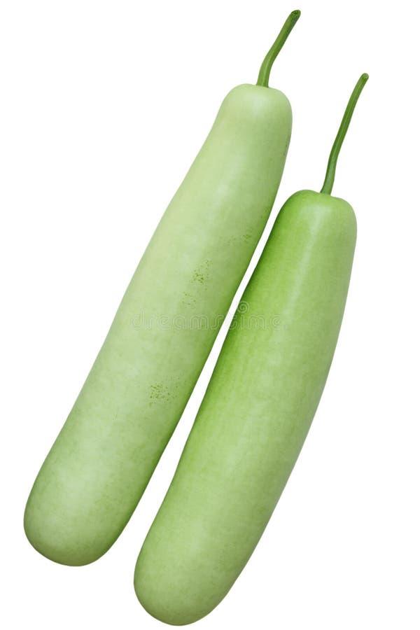 Fruta vulgaris do Lagenaria fotos de stock