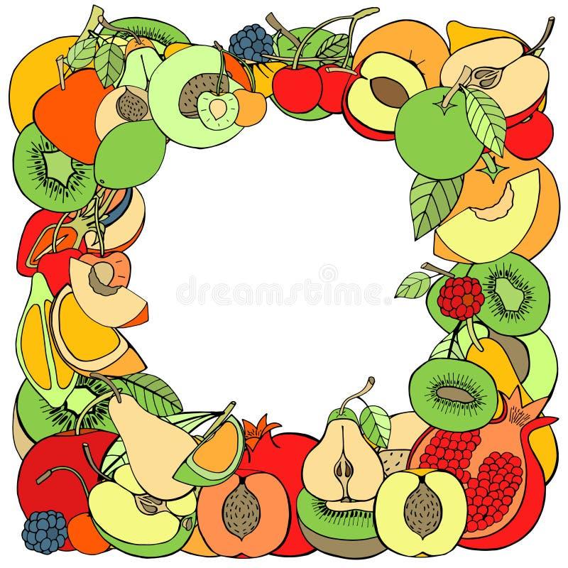 Fruta y baya libre illustration
