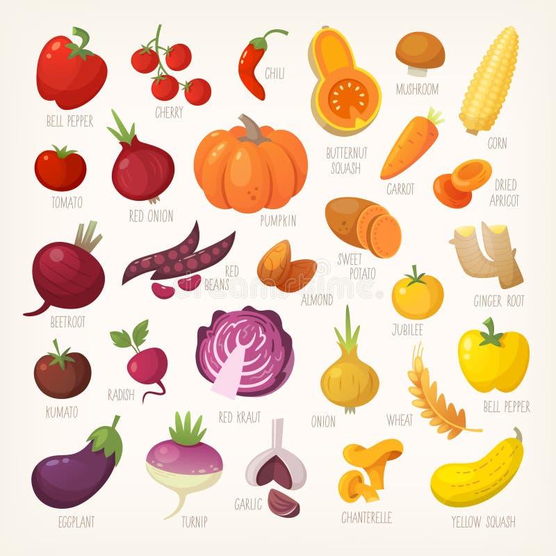 Fruta y verdura colorida con nombres ilustración del vector