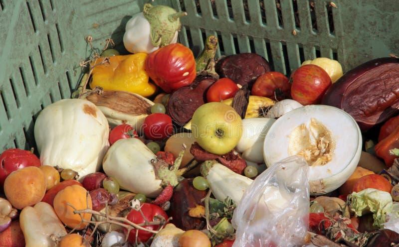 Fruta y verdura putrefacta usada como abono en una granja imágenes de archivo libres de regalías