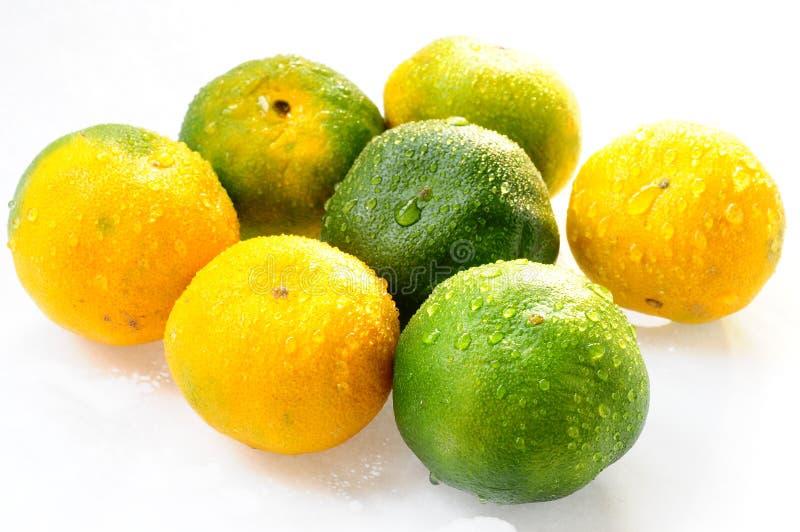 Frutas alaranjadas