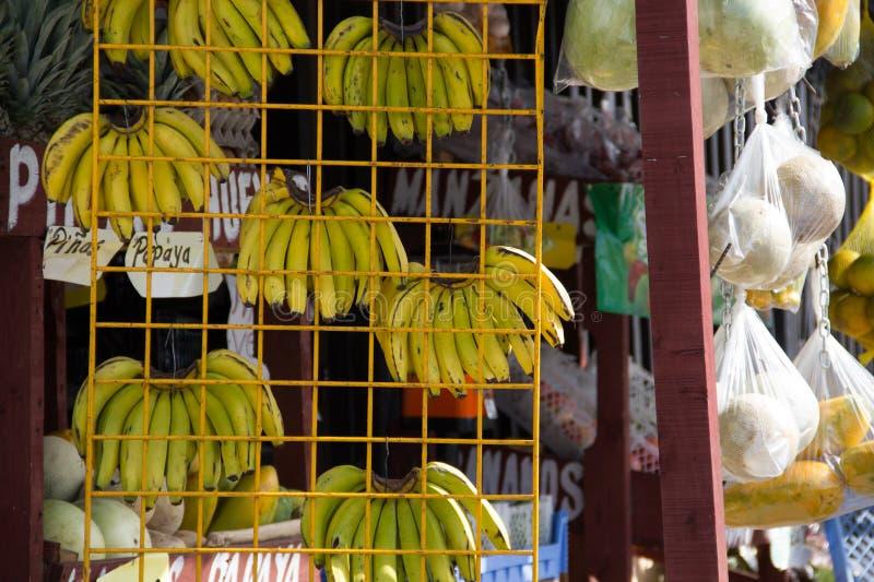 Frutas banano stock photo