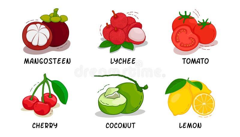 Frutas, frutas colección, mangostán, lichi, tomate, cereza, coco, limón fotos de archivo libres de regalías