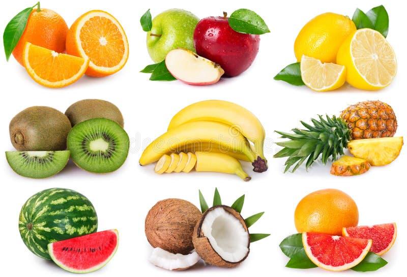 Frutas de la colecci?n en el fondo blanco fotos de archivo libres de regalías