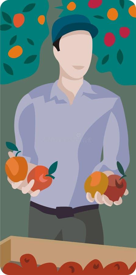 Frutas de la cosecha del hombre stock de ilustración