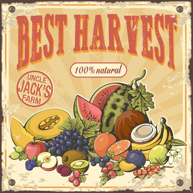 Frutas de la cosecha y cartel retro de las bayas ilustración del vector