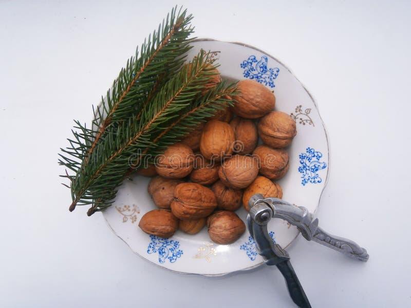 Frutas de la nuez imagen de archivo