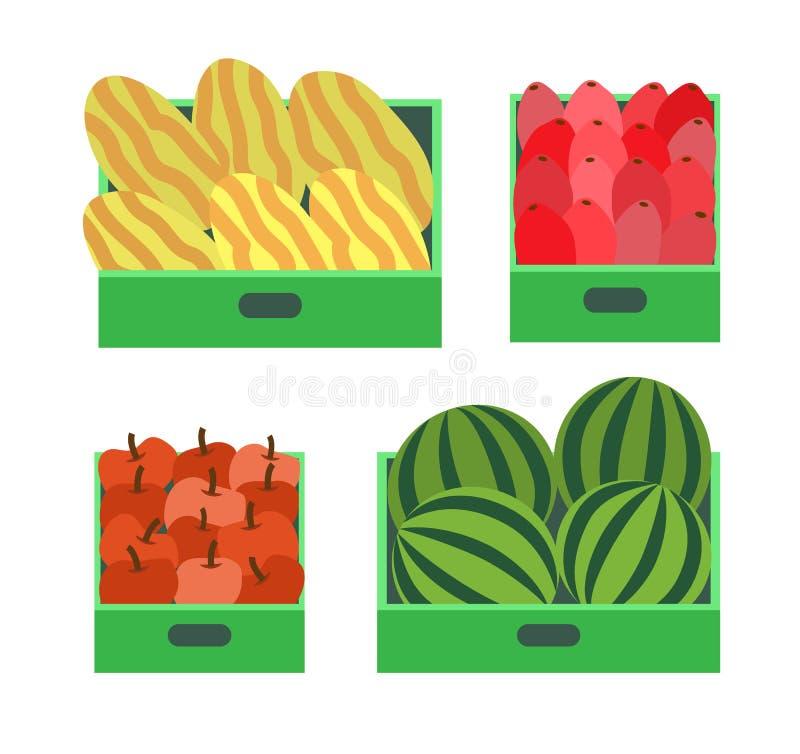 Frutas de la sandía y del melón en vector del envase stock de ilustración