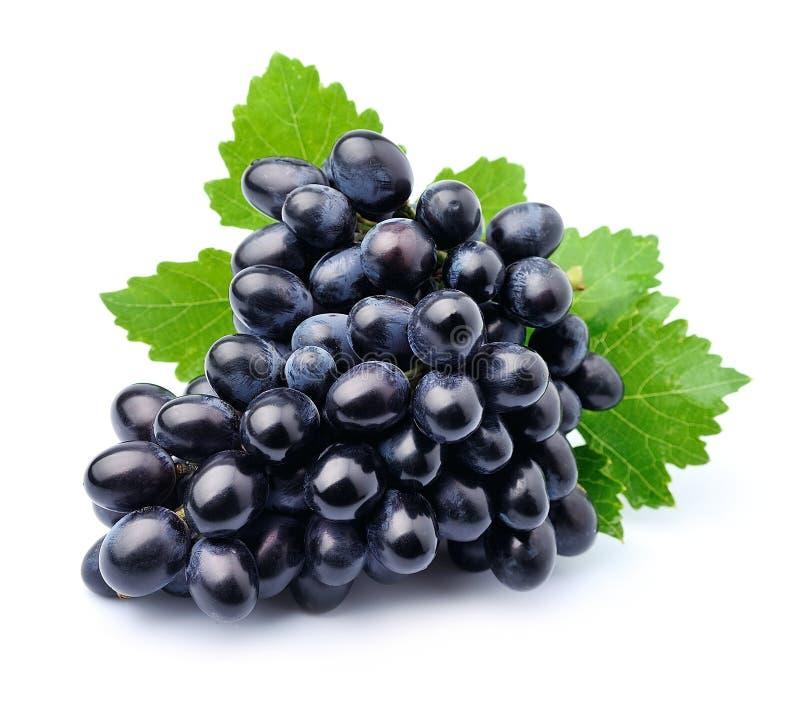 Frutas de las uvas fotos de archivo libres de regalías