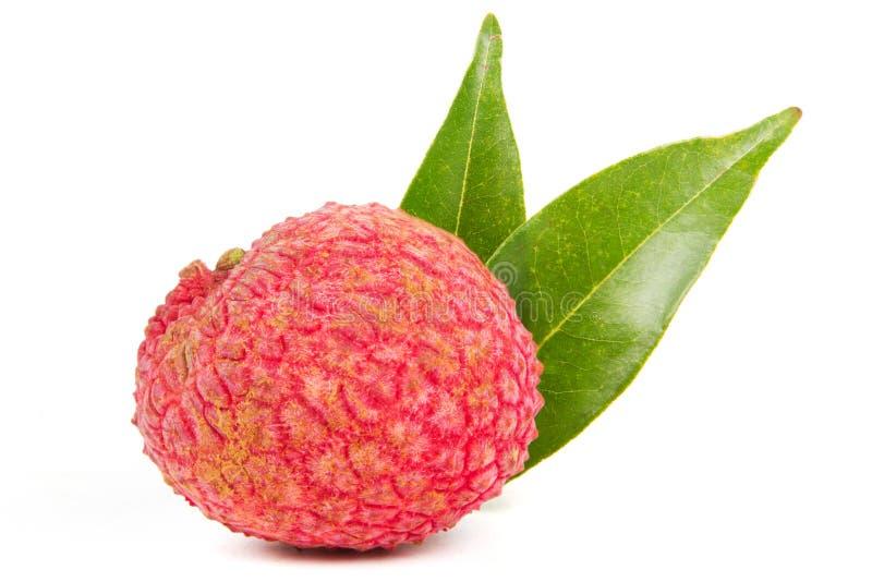 Frutas de Lychee aisladas en blanco imagen de archivo libre de regalías