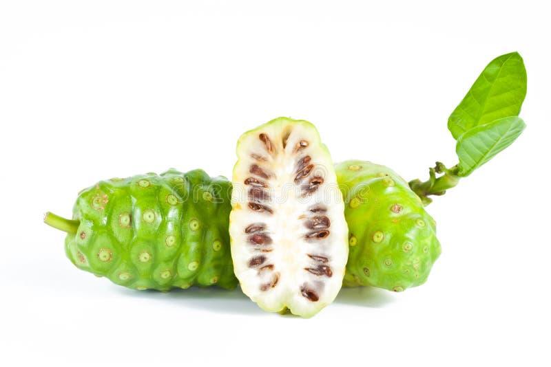 Frutas de Noni imagem de stock