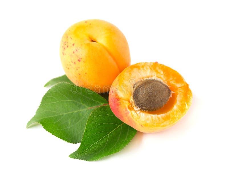 Frutas del albaricoque aisladas en el fondo blanco Trayectoria de recortes fotografía de archivo