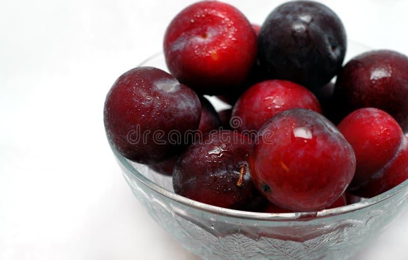 Frutas del ciruelo imagenes de archivo