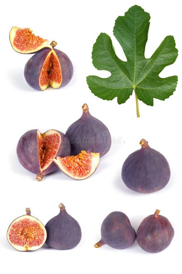 Frutas del higo fijadas fotos de archivo