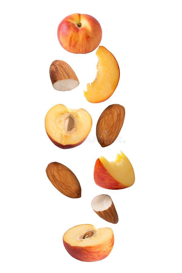 Frutas del melocotón que vuelan aisladas en el fondo blanco imagen de archivo libre de regalías