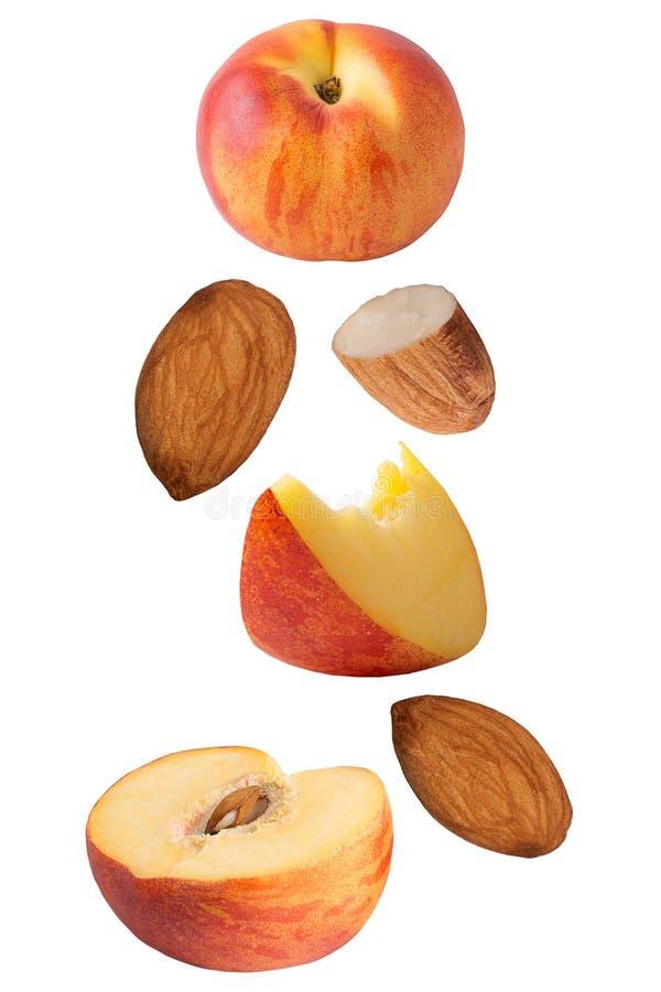 Frutas del melocotón que vuelan aisladas en el fondo blanco stock de ilustración