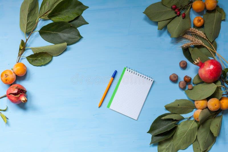 Frutas del otoño, nueces, granada en fondo azul fotos de archivo