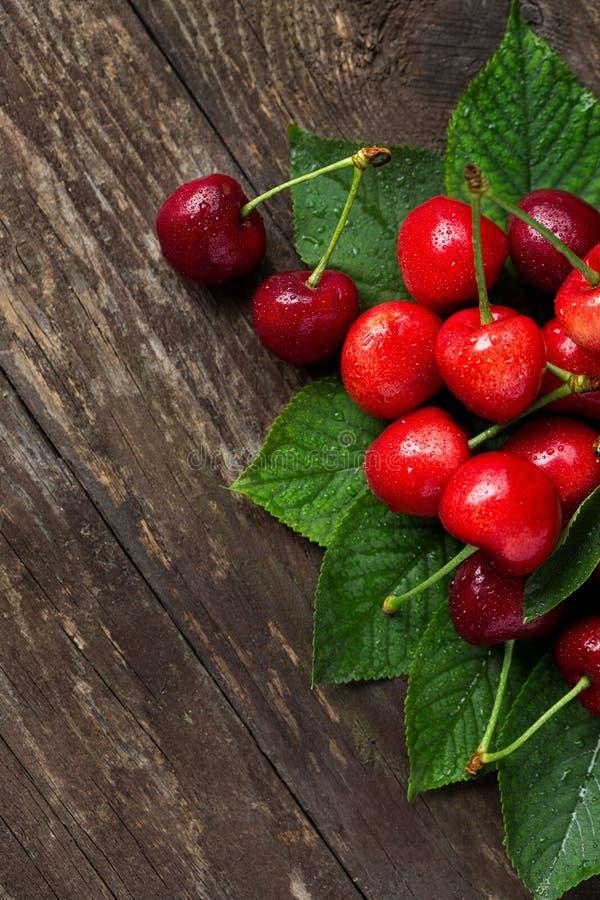 Frutas del verano de las cerezas con las hojas escogidas recientemente foto de archivo libre de regalías