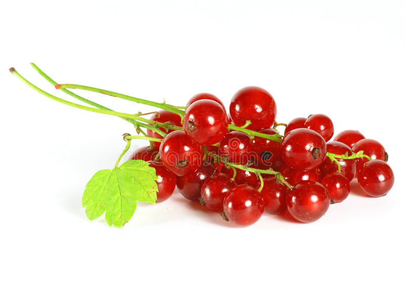 Frutas do verão: Redcurrant foto de stock royalty free