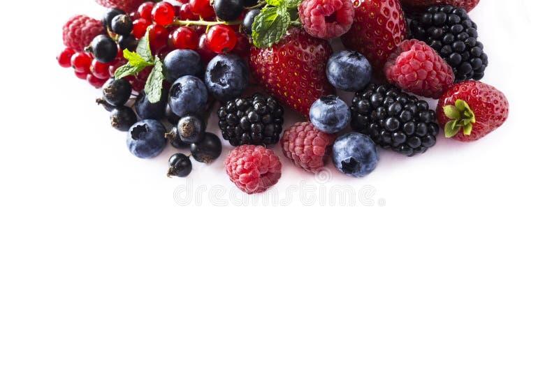 Frutas e bagas isoladas no fundo branco Corintos, framboesas, mirtilos, morangos e amoras-pretas maduros com um MI imagem de stock royalty free