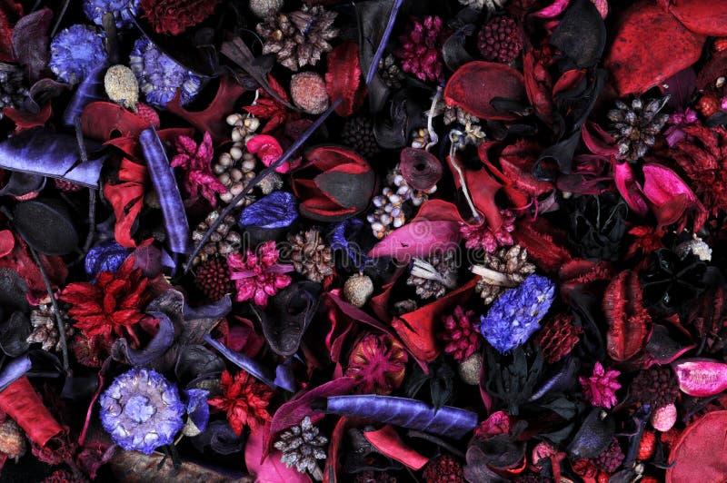 Frutas e ervas perfumadas foto de stock royalty free