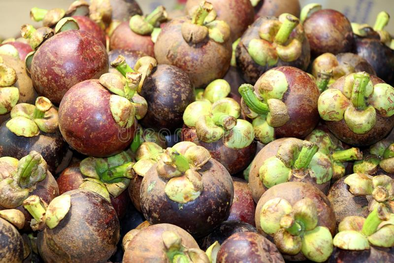 Frutas en el mercado de la noche - Kota Kinabalu Sabah Borneo Malaysia Asia del mangostán fotografía de archivo