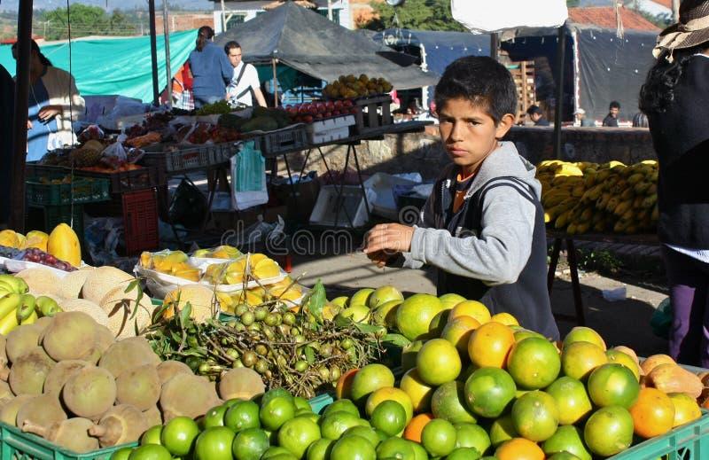 Frutas exóticas no mercado dos farmer´s, Colômbia fotografia de stock