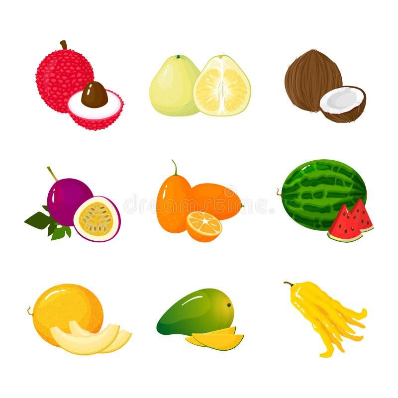Frutas exóticas tropicales fijadas Vector la colección plana del icono de la historieta del ejemplo aislada en blanco stock de ilustración