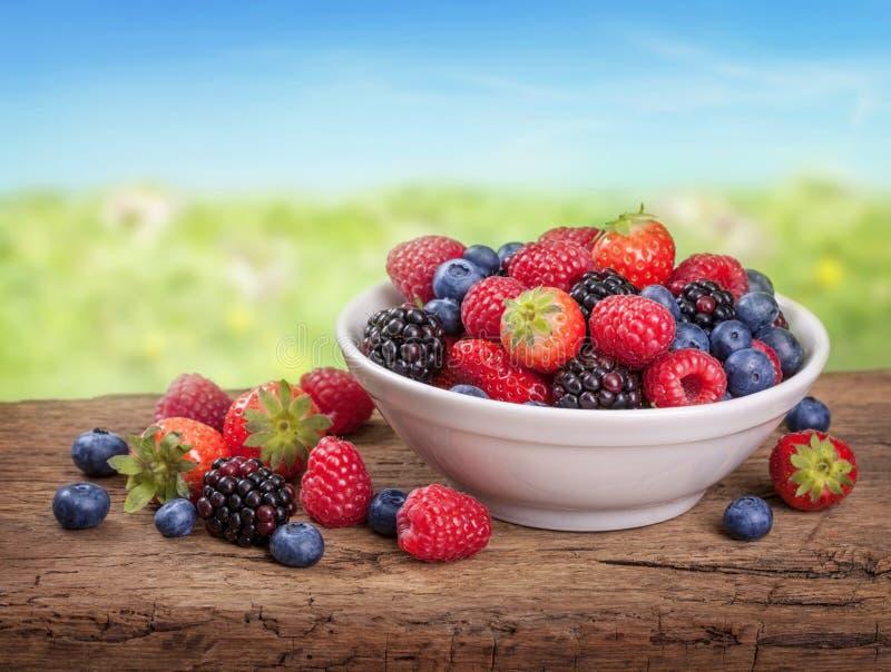 Frutas frescas foto de archivo