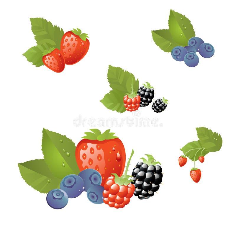 Frutas frescas aisladas ilustración del vector