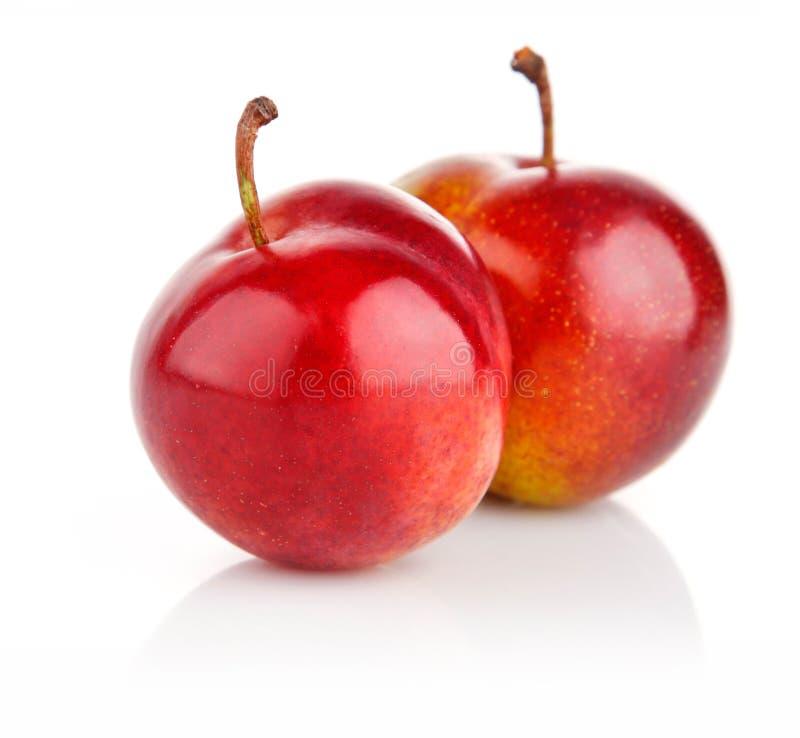 Frutas frescas da ameixa isoladas no branco imagens de stock royalty free