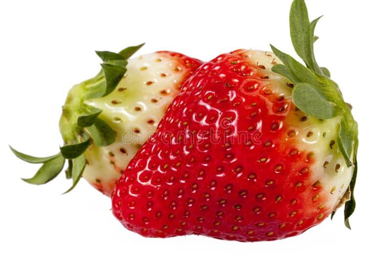 Frutas frescas de la fresa roja aisladas en el fondo blanco, cierre para arriba imágenes de archivo libres de regalías
