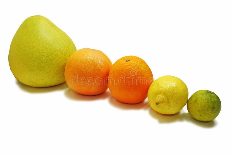 Frutas frescas de la fruta cítrica imágenes de archivo libres de regalías